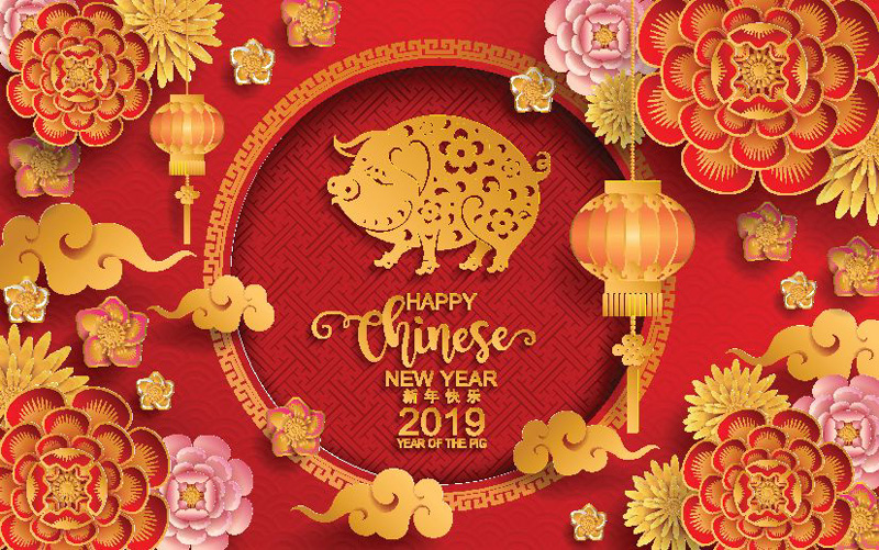 Happy Chinese lunar new year for the year of pig